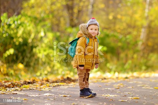 istock Joyful little boy ready for his first day at the preschool or in kindergarten after summer vacation 1158815107