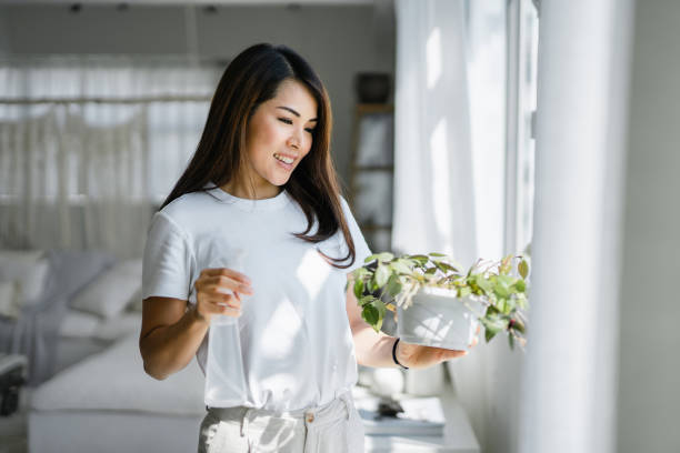 Joyful young Asian woman enjoys her time at home and watering her plant with watering spray by the window at home