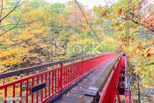 istock Jozankei Futami Suspension Bridge and Autumn forest 1063993776
