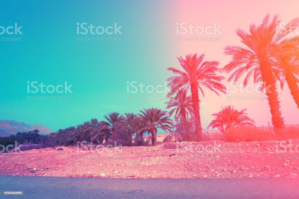 Judean desert in Israel at sunset. royalty-free stock photo