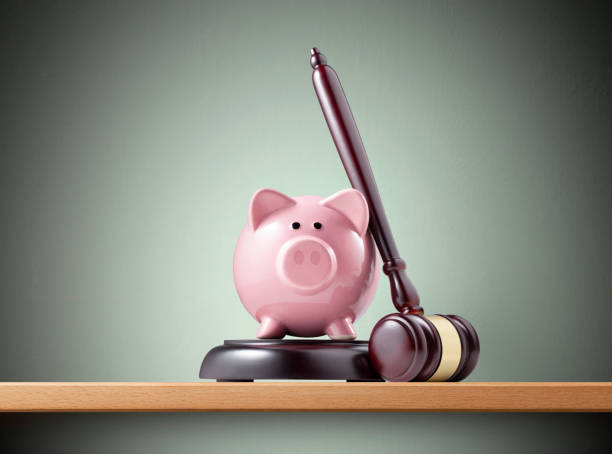 Judge gavel with piggy bank on the shelf stock photo