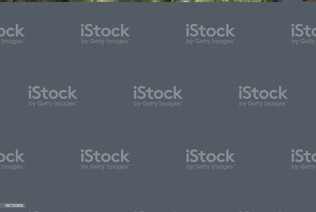 Judgment royalty-free stock photo