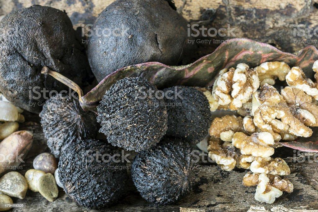 Juglans nigra, the eastern black walnut stock photo