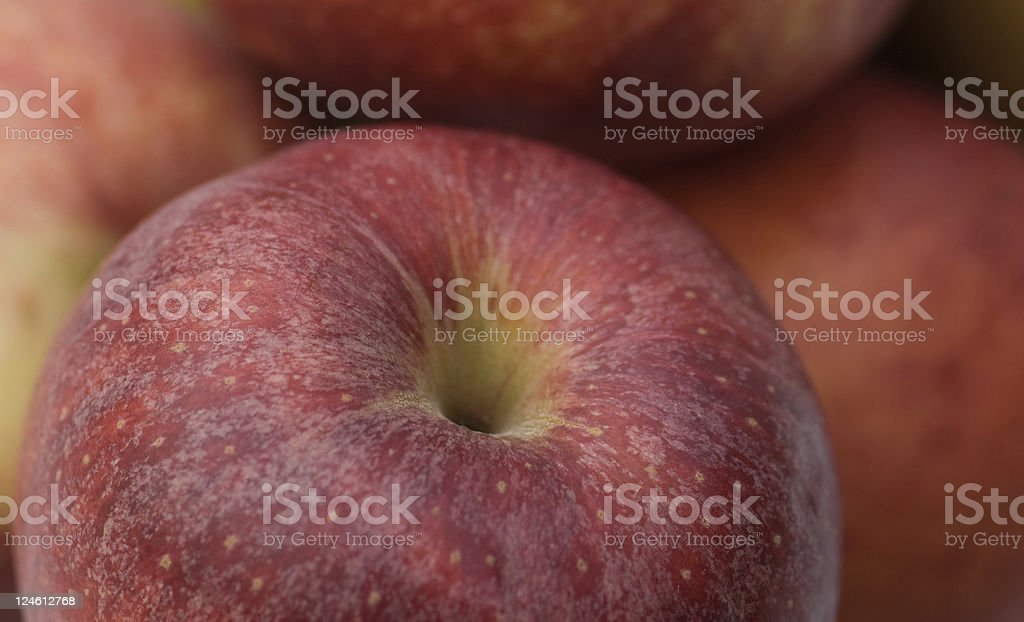 Juicy Apple royalty-free stock photo