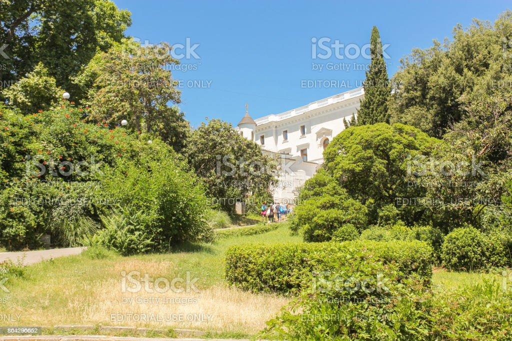 Juicy greenery of the park. royalty-free stock photo