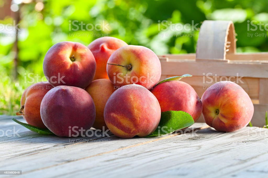 juicy peaches stock photo