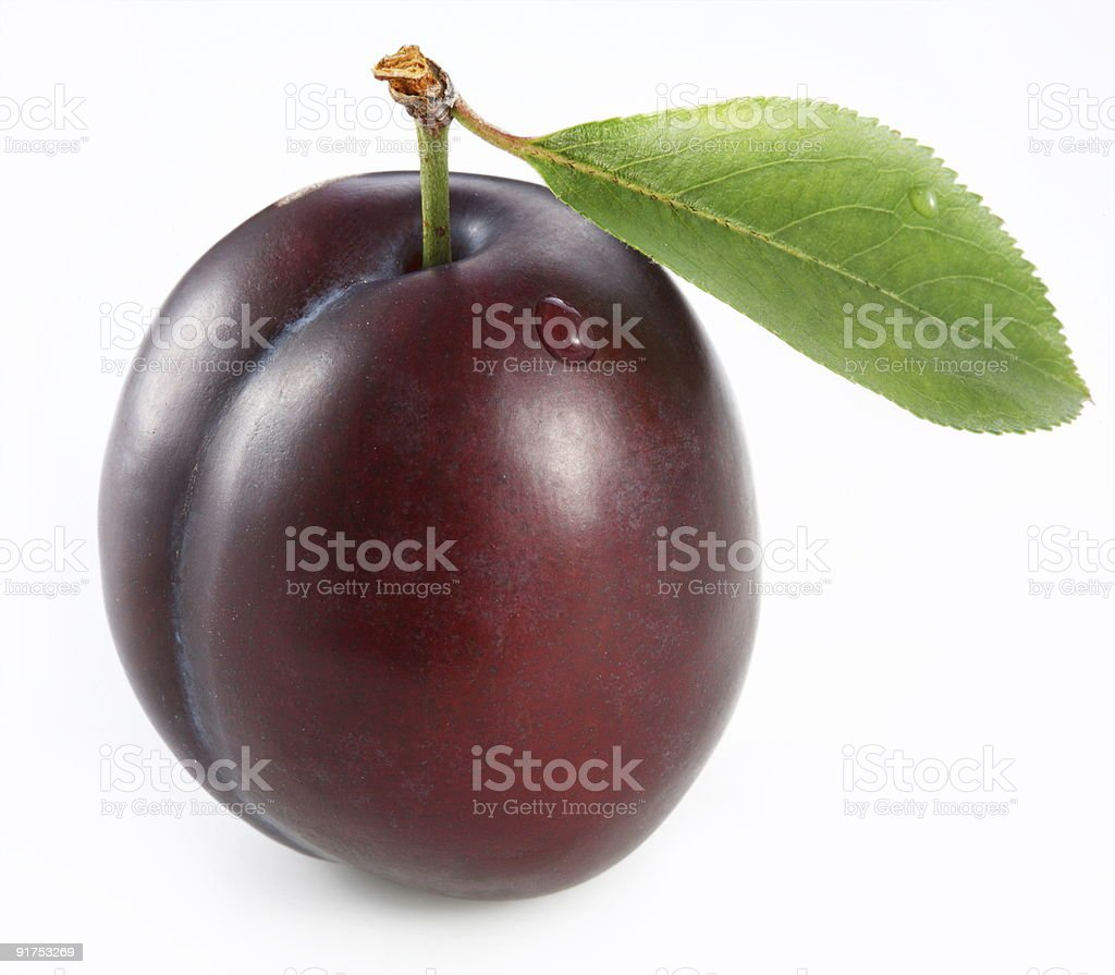 Juicy plum with a single leaf and a water drop on the side stock photo