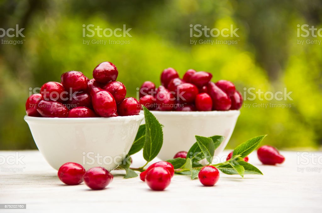 Juicy red berries in white bowls. Organic fruits and berries. Fresh dogwood berries. stock photo