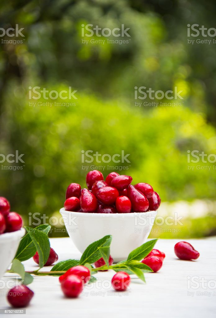 Juicy ripe cornel berries in a white bowl in a summer garden. Copy space stock photo