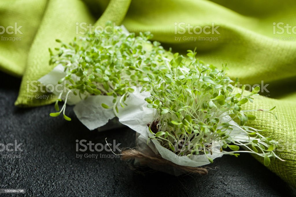 Juicy Shoots Of Micro Greens In A Container Food For Weight