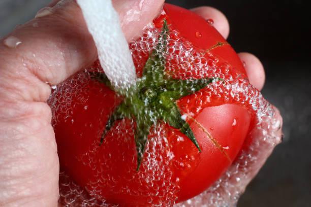 水の流れの下であなたの手にジューシーなトマト ストックフォト