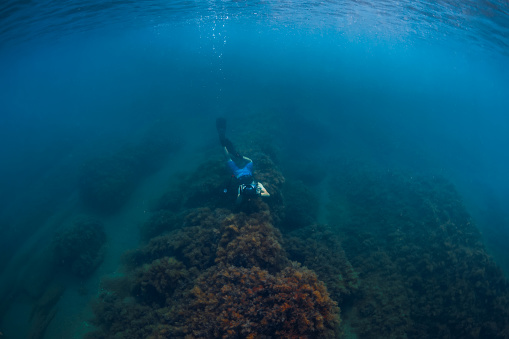 istock July 30, 2019. Anapa, Russia. Underwater photographer with camera glides stones with seaweed in blue sea 1195379899