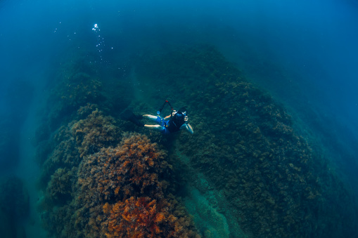 istock July 30, 2019. Anapa, Russia. Underwater photographer with camera glides stones with seaweed in blue sea 1195379925