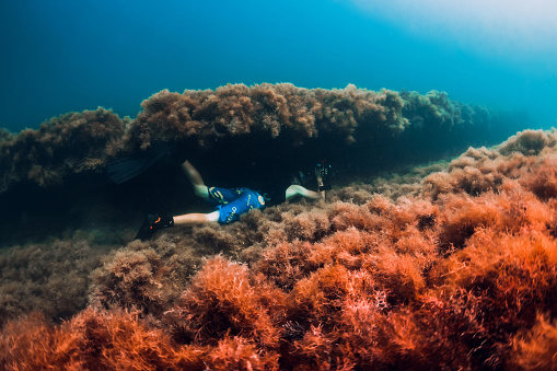 istock July 30, 2019. Anapa, Russia. Underwater photographer with camera glides stones with seaweed in blue sea 1195379936