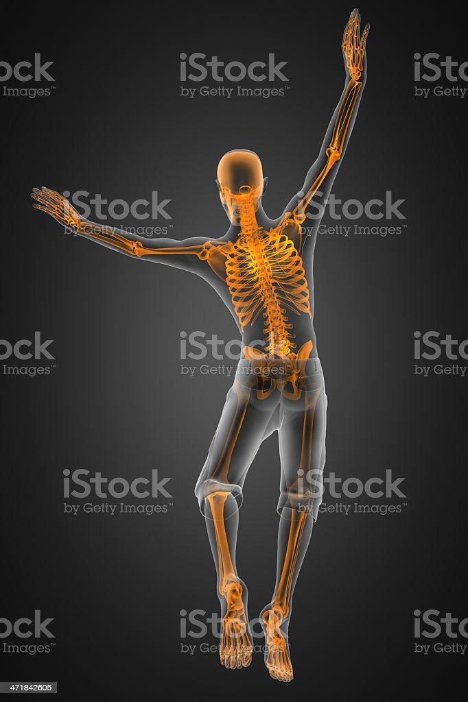 jump man radiography royalty-free stock photo