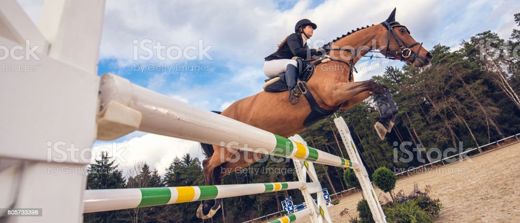 Jump on a horse over the hurdle stock photo