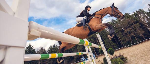 hoppa på en häst över hindret - hästhoppning bildbanksfoton och bilder