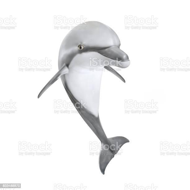 Jumping bottlenose dolphin tursiops truncatus picture id833488870?b=1&k=6&m=833488870&s=612x612&h=egktel9hmnajkpifebdz1lrosmwmxrd hempfck6vjy=