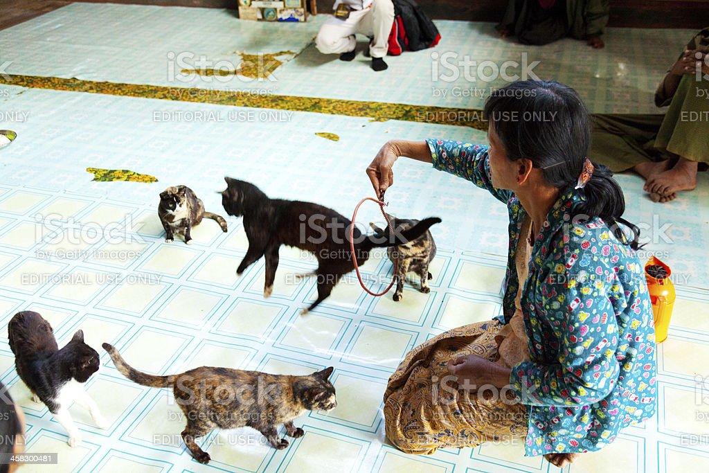 Jumping Cat Monastery, Myanmar royalty-free stock photo