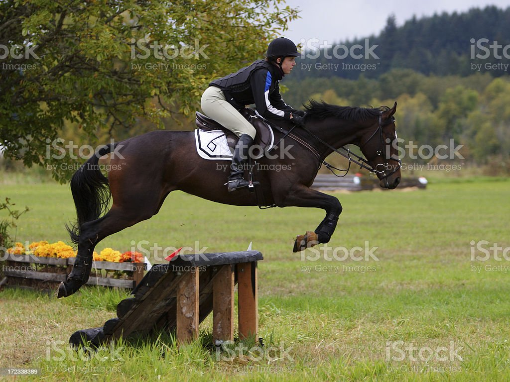 Jumping Clean stock photo
