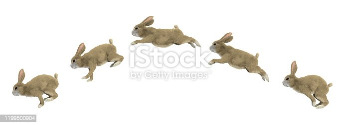 istock jumping cycle of a rabbit 1199500904
