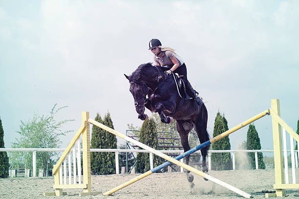 Jumping horse picture id471866523?b=1&k=6&m=471866523&s=612x612&w=0&h=loej11wdiaxkhfujpzqd3or2 dalwxugguildvc 8bw=