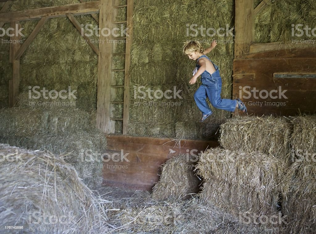Jumping In Hay royalty-free stock photo
