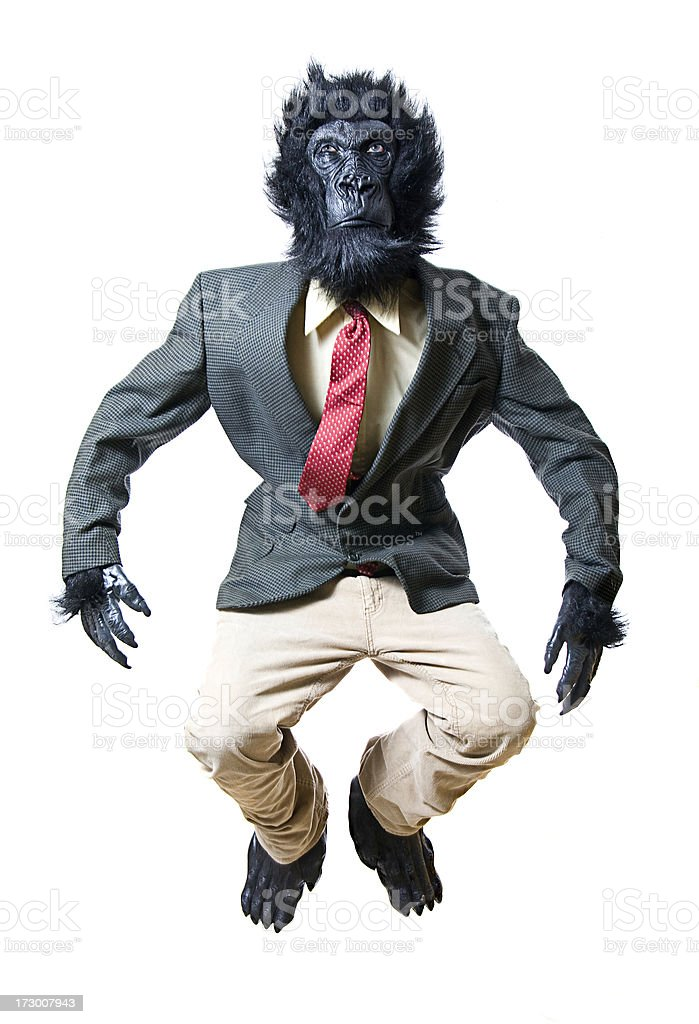 Jumping or Falling Business Gorilla stock photo
