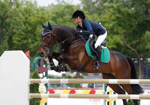 jumping - hästhoppning bildbanksfoton och bilder