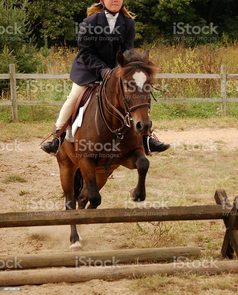 Jumping Pony stock photo