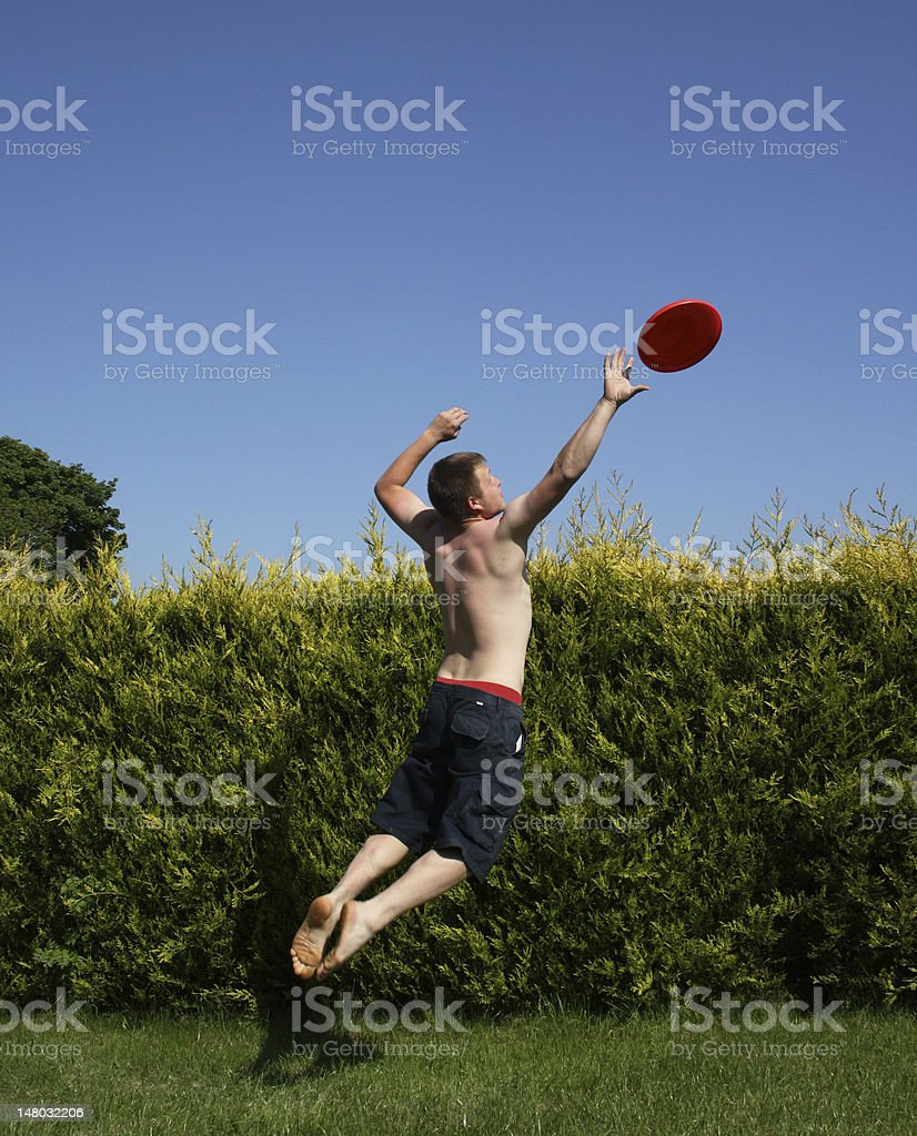 Jumping to catch frisbee in garden stock photo