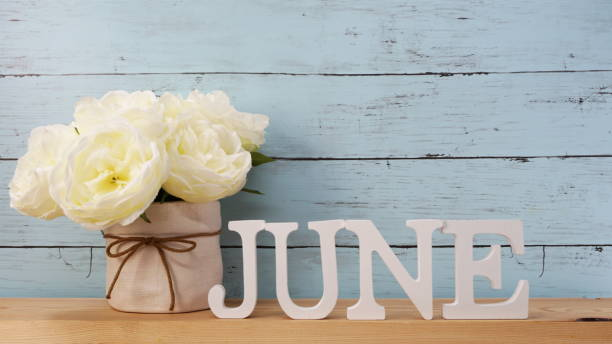 june alphabet letter with space background - june stock photos and pictures