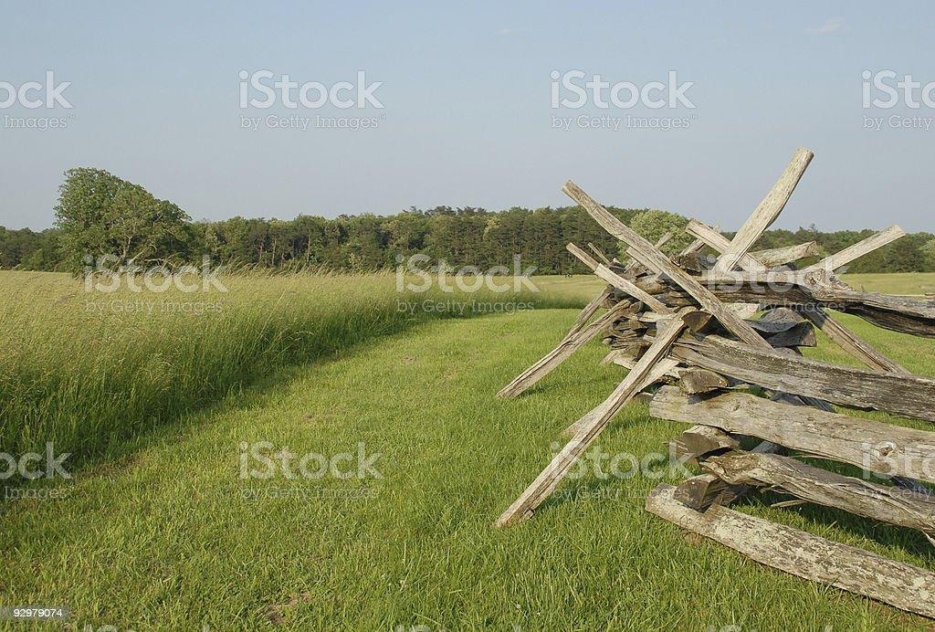 June greenery at Manassas battlefield stock photo
