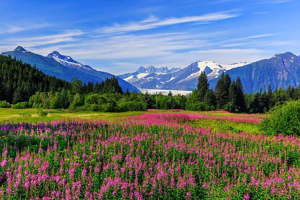 Juneau, Alaska – Foto