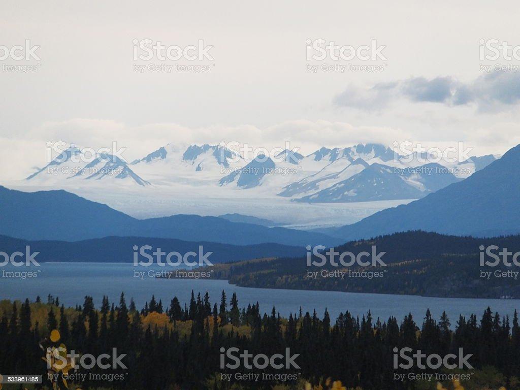 Juneau Icefield wildlife reserve stock photo