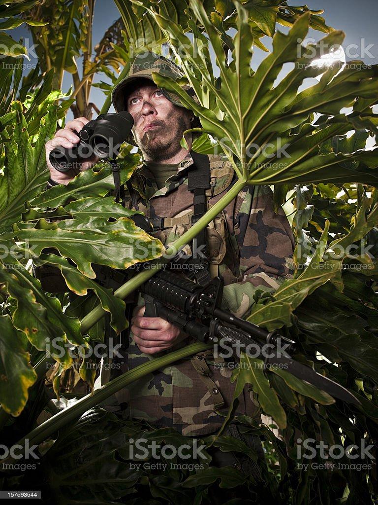 Jungel Warfare royalty-free stock photo