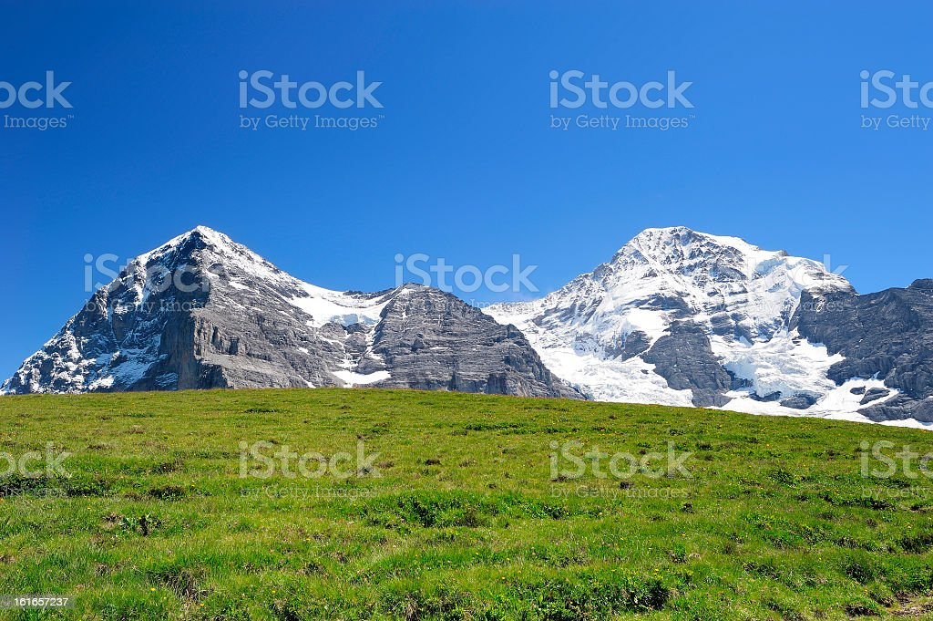 Jungfrau with green grass royalty-free stock photo