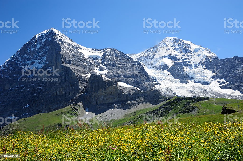 Jungfrau with yellow flower royalty-free stock photo