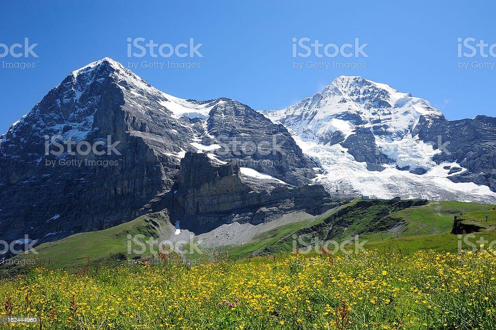 Jungfrau with yellow flower stock photo