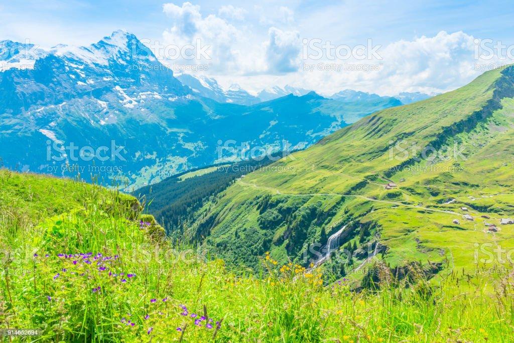 Jungfrau-Aletsch-Bietschhorn UNESCO World Natural Heritagei n summer. stock photo