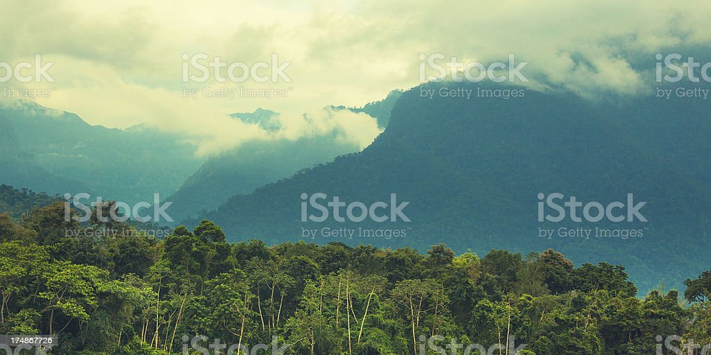 jungle and mountains in honduras stock photo