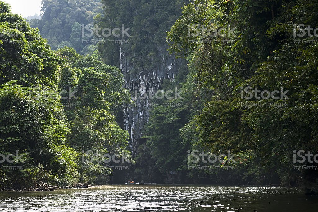 Jungle boat trip stock photo