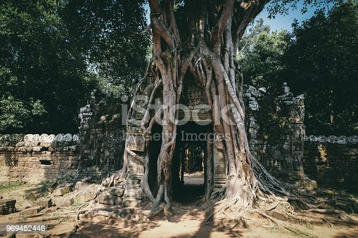 istock Jungle Book 969452446