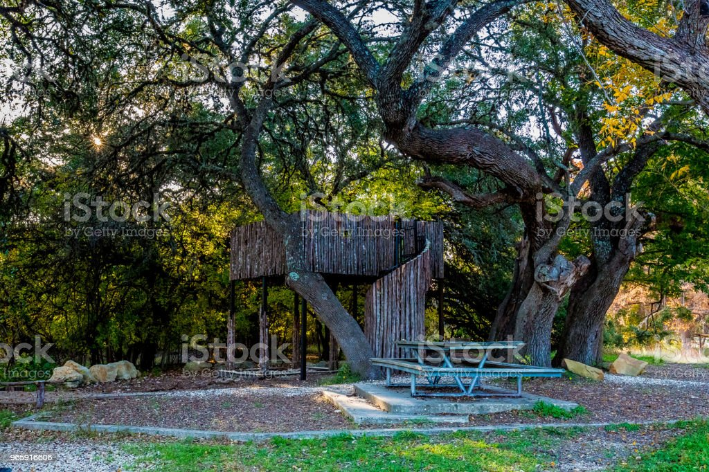 Jungle Gym en picknicktafel in Woodland Park gebied. - Royalty-free Beschermd natuurgebied Stockfoto