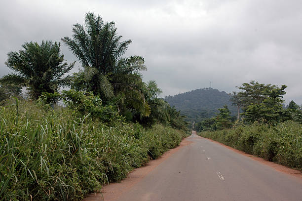 Jungle Highway A long African highway in Ivory Coast. côte d'ivoire stock pictures, royalty-free photos & images