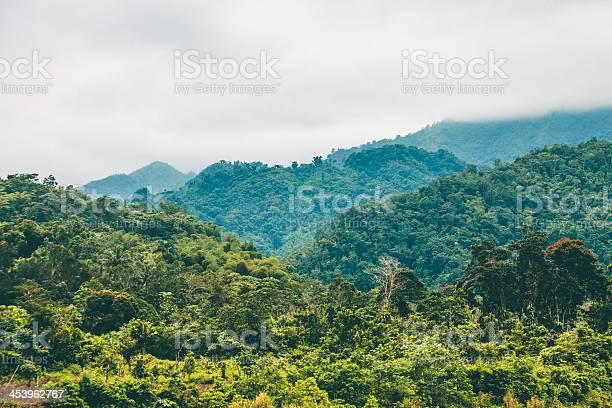 Jungle hills picture id453962767?b=1&k=6&m=453962767&s=612x612&h=vp6ni7szam8tibumdqoyqk1dj0d4lioqn90uhaspvfi=