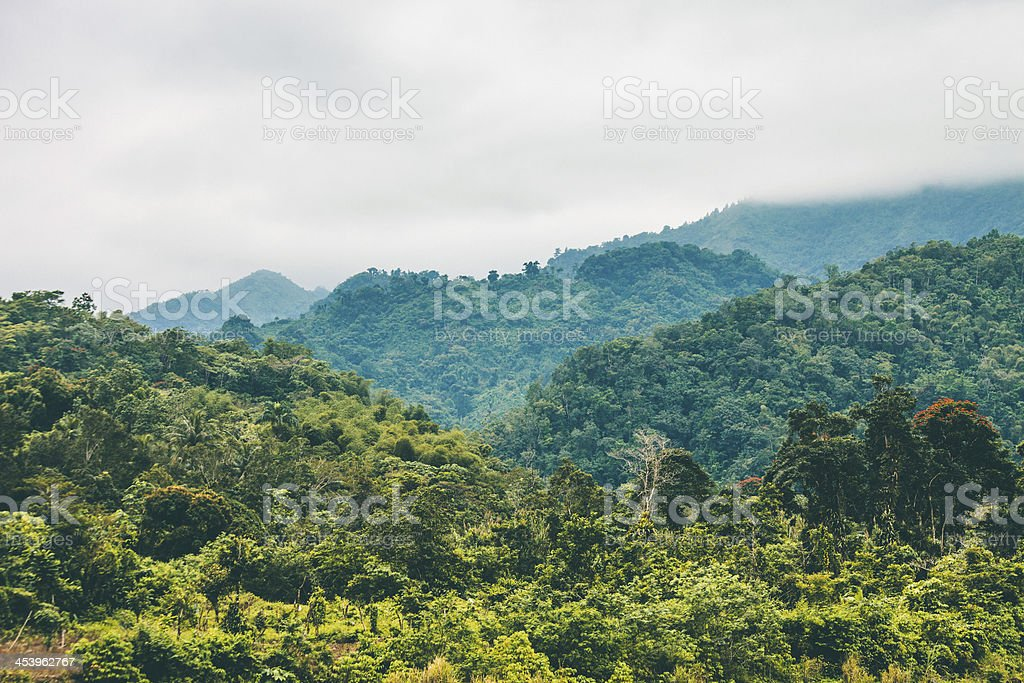 Jungle hills. stock photo
