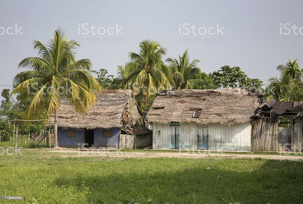 Jungle Homes royalty-free stock photo