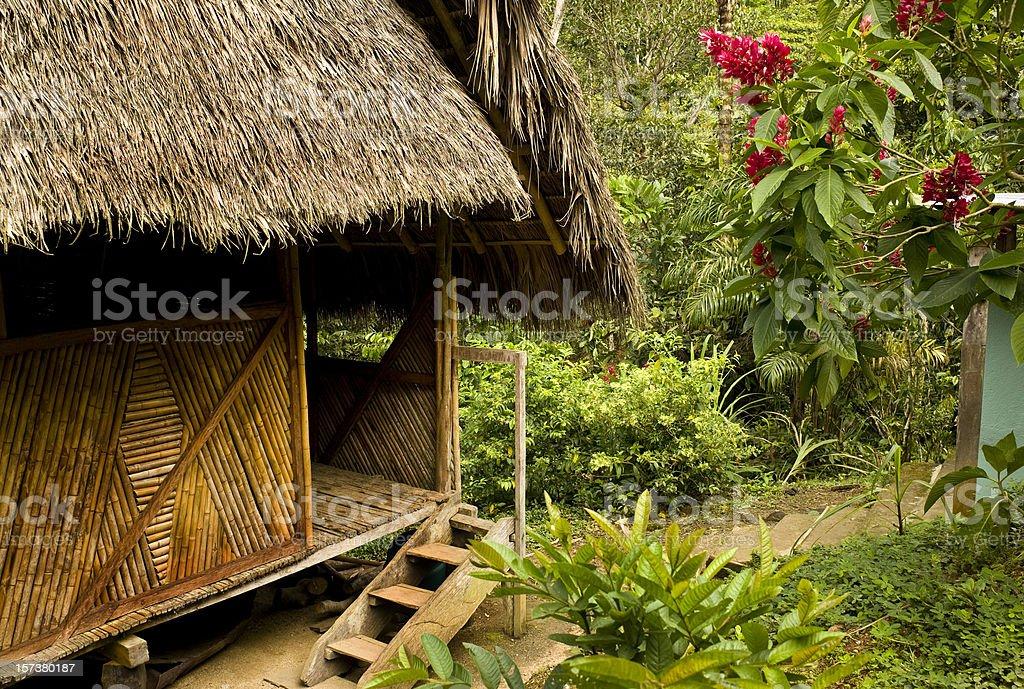 Jungle Hut royalty-free stock photo