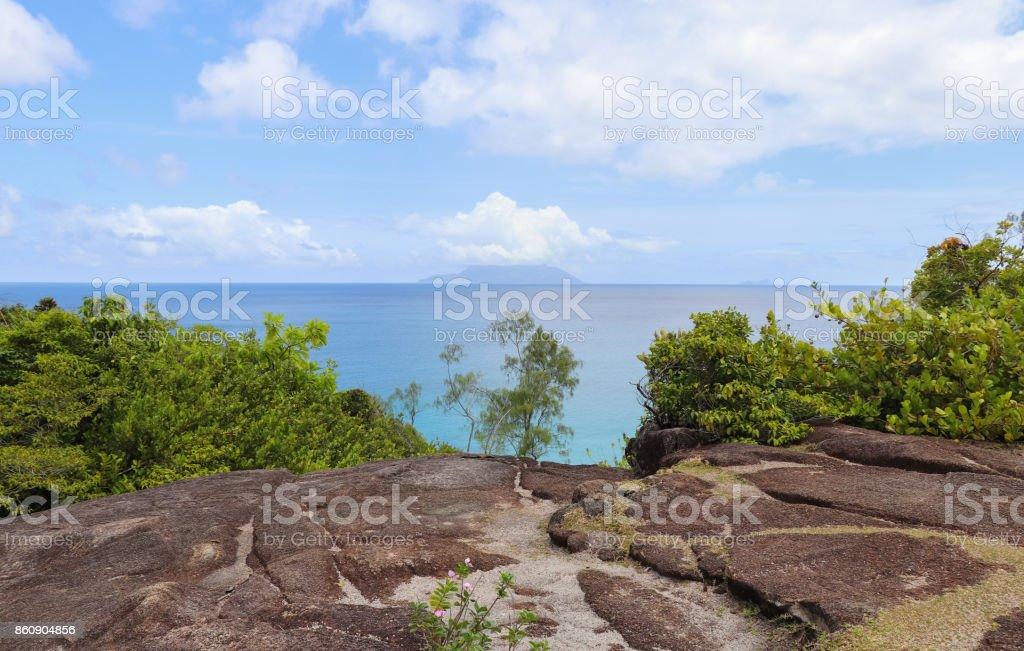Jungle of Seychelles. The island of Mahe stock photo